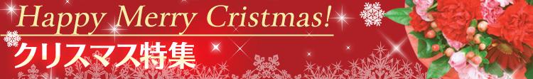 花急便のクリスマス特集
