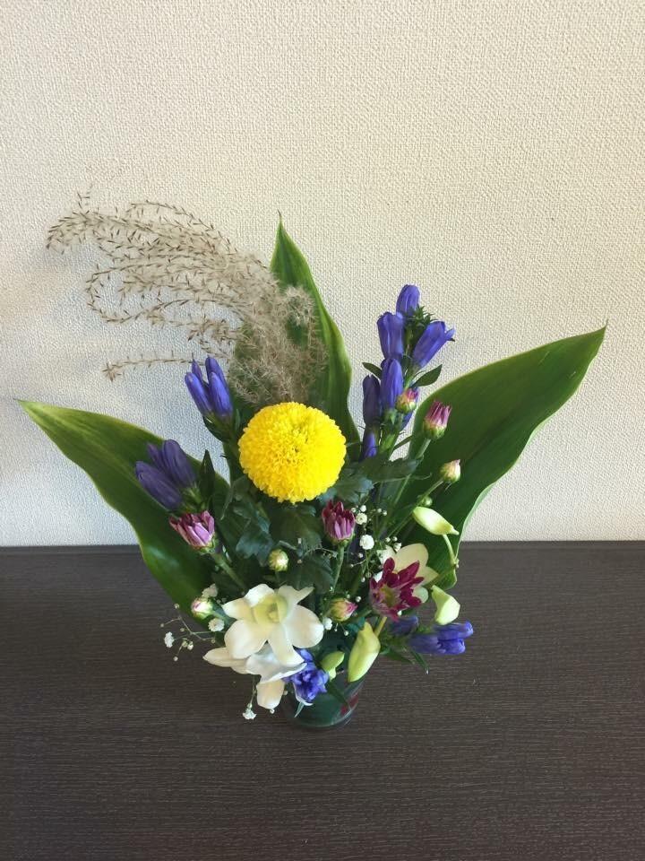 花育の活動をご紹介します。 花・花束の当日配達は花急便へ!(花キューピット加盟店)